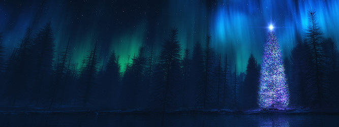 wallpaper aurora boreal 1600 x 900 christmas wallpaper