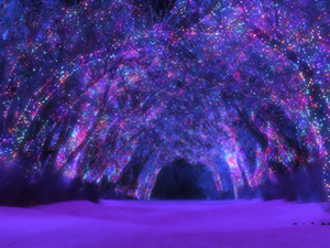 sleepwalkerwoodwinternightmixed1