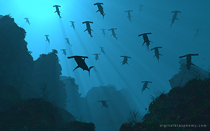 Flight of the Hammerheads
