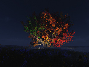 The Fall Spectrum (Night)
