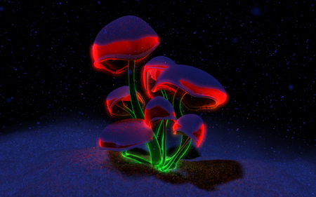 Holiday Fluorescence