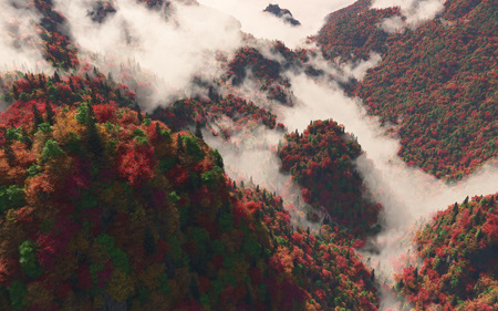 Misty Ridge (Autumn)