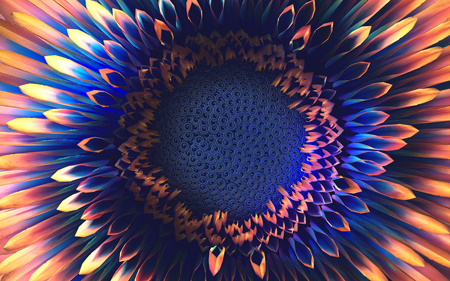 Phyllotaxis